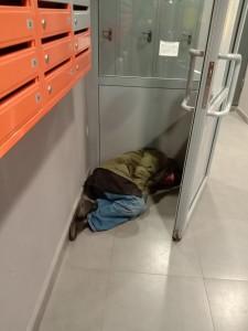 Бомж спит