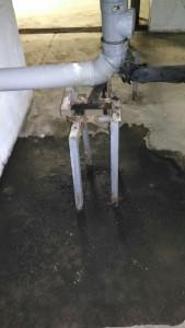 Вода и плесень в подвале дом ул. Ярцевская 33 к.1